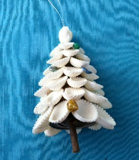 White shell tree