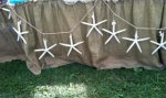7 foot strand Large White Starfish Garland